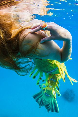 Underwater Shell Rings by Bella Beach Jewels  Alicia Underwater Fin Folk Productions