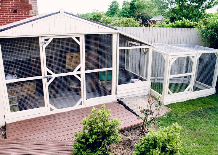 Great home here for rescue bunnies Poppy,Finn, Binky and Sooty. Thank you Andy Bowering for allowing us to share this. www.best4bunny.com