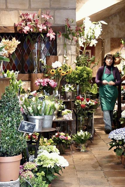 405 best flower shop interiors images on pinterest floral shops flower shop by rekatot mightylinksfo