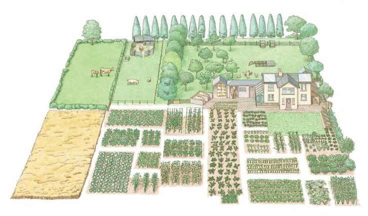 Love the illustration. Even on a small 1-acre farm, you can create a self-sufficient homestead by following these guidelines.