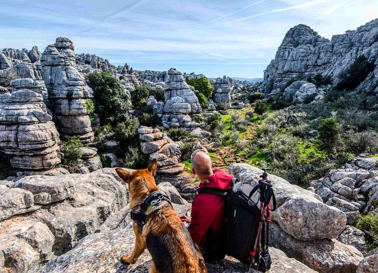 Hikking with dog is never easy but always worth it #torcal #antequera #spain#loves_spain #ig_andalucia#estaes_espania#estaes_andalucia#loves_andalucia#andalucia#greatoutdoors#ok_andalucia#travelphotography #potd#instatravel#visitspain#europe_gallery#landscape#eurotrip#adventurelife#getoutstayout#hikingwithdogs#dogsofinstagram#traveldog#travelphotography#gsd#germanshepherd#alsatian#juliusk9#campingwithdogs