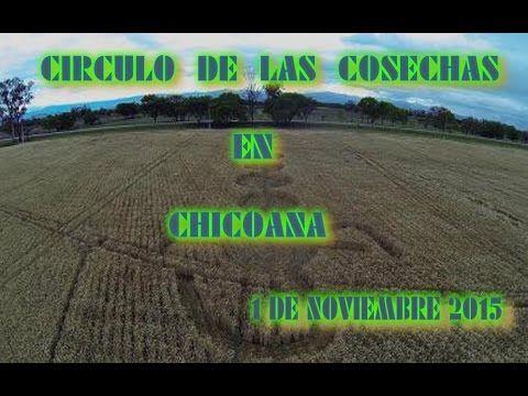 """-Circulo de las cosechas en Chicoana  """"Argentina""""   1/11/ 2015"""
