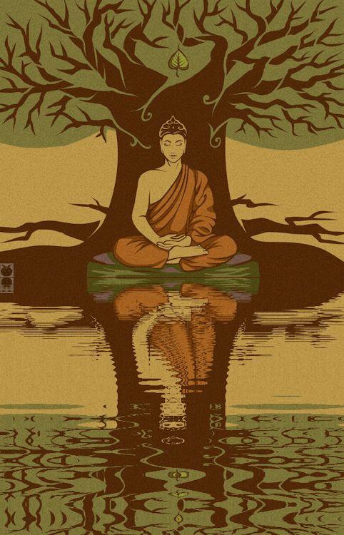 meditación bajo un árbol y cerca de un rio, como lo hizo Siddharta #buddha #Siddharta #meditación #buda