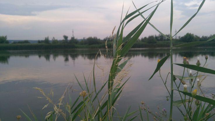 Chill day #nature #lake