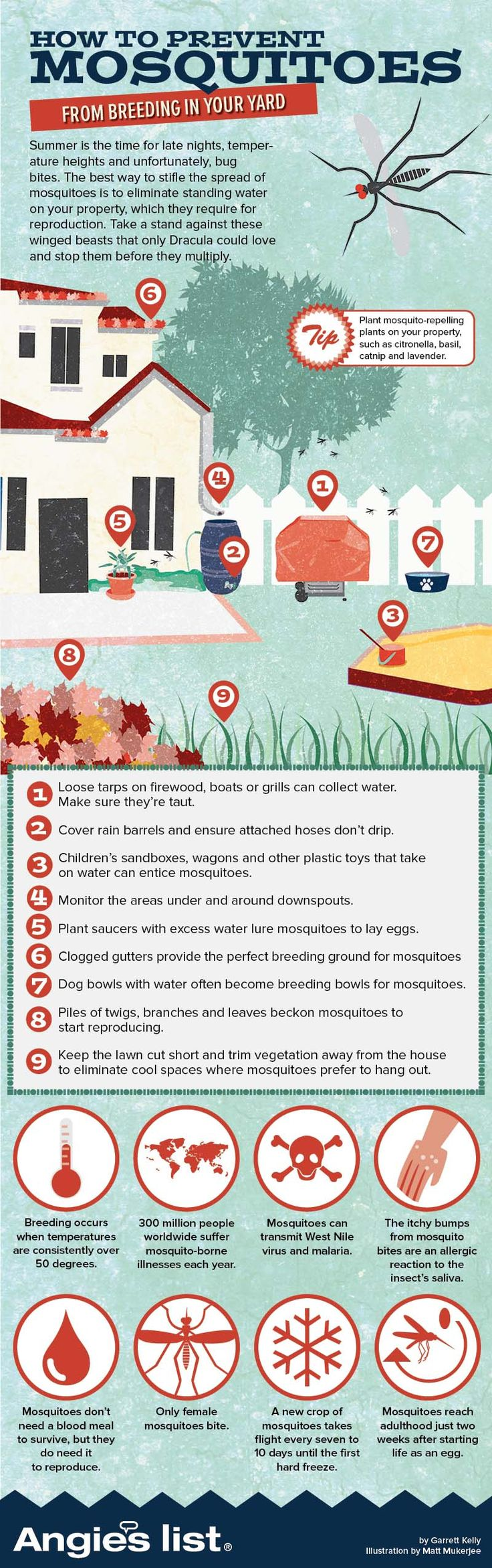 Infographic How To Prevent Mosquitoes From Breeding In