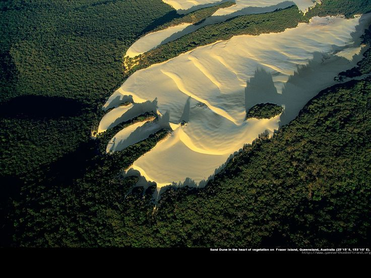 Sand dune in the heart of vegetation, Fraser Island, Queensland, Australia (Giant footprint...cannot be unseen!)