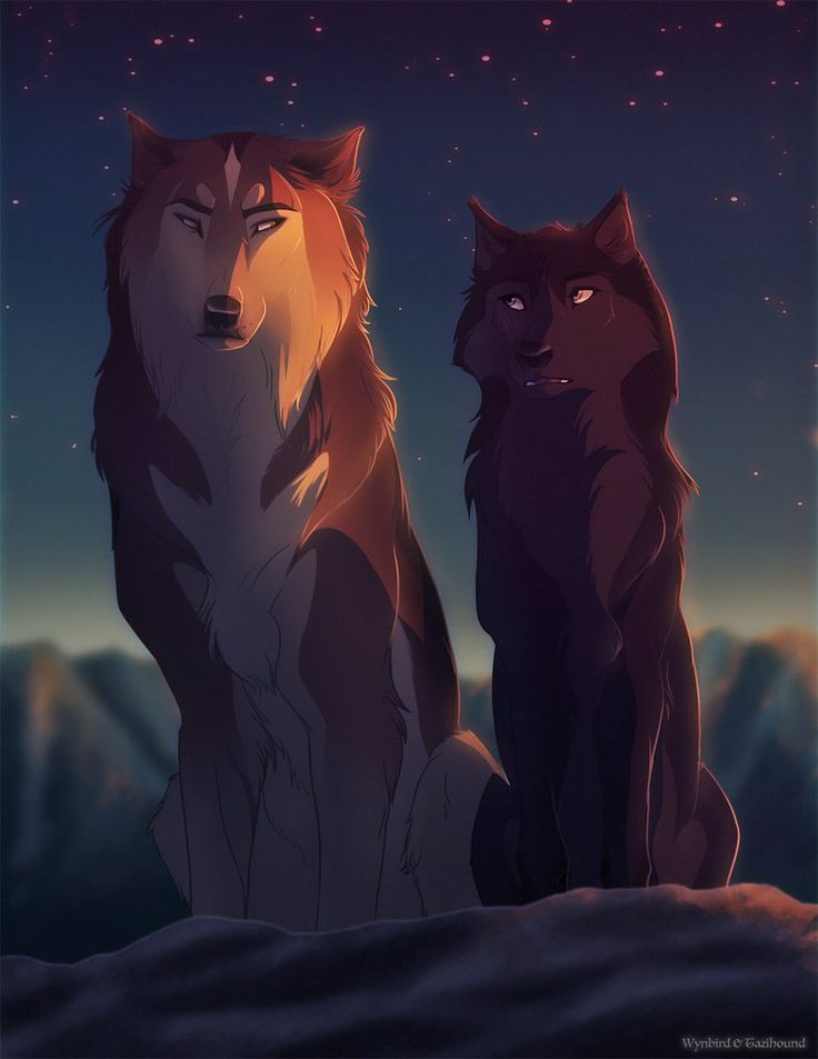 Left to right : Apollo is a funny and a handsome wolf. He is also very loud. His sister is Artemis and Apollo has no mate or pups. Played by me Sunspirit. Artemis is a kind and quiet shewolf, she has no mate or pups and is played by me Sunspirit