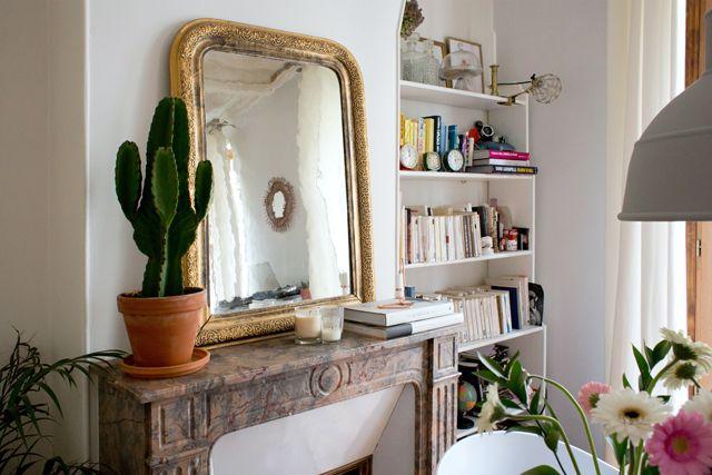 un appartement parisien : le cactus devient un indispensable dans la décoration