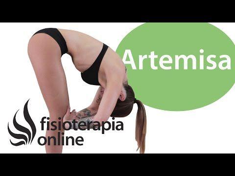 Gimnasia Abdominal Hipopresiva: Beneficios y principios básicos de realización.   Fisioterapia Online