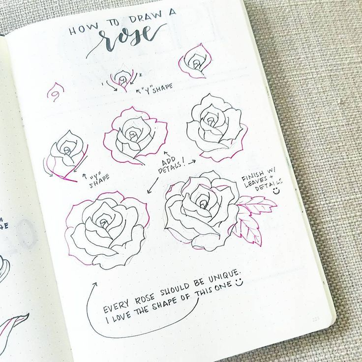 """163 Likes, 6 Comments - liz (@bonjournal_) on Instagram: """"It's time for #flowerfriday featuring... a rose! The steps can be complicated but remember that…"""""""