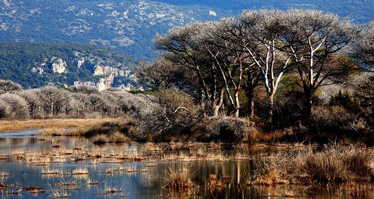 Maremma's most popular nature park: the Parco Regionale della Maremma Tuscany
