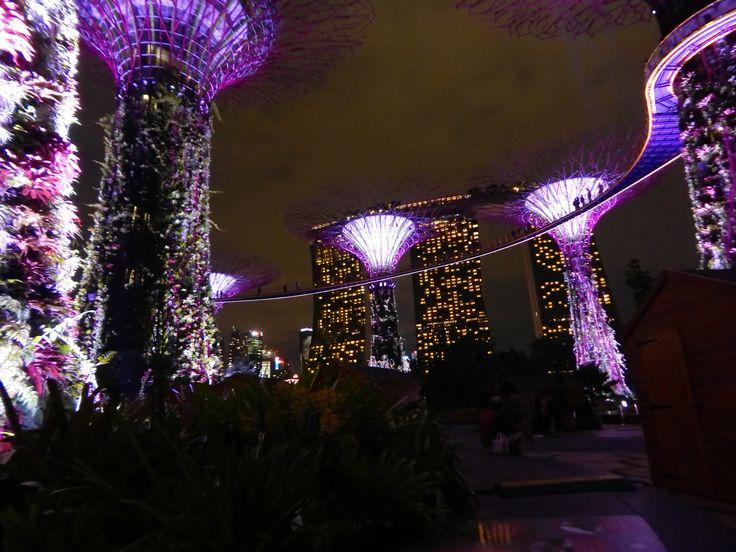 #singapore #travel #wander