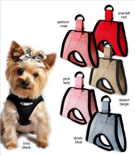 "$25 Ultra USA Choke-Free Dog Harness - Limo Black - XS (10"" - 13"" girth) by Doggie Design, http://www.amazon.com/dp/B004XEJI9S/ref=cm_sw_r_pi_dp_pCt1pb1E5RWYW"