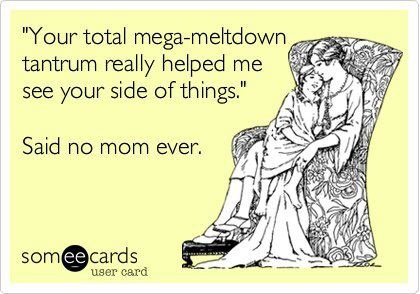 your total mega-meltdown tantrum really helped me see your side of things. said no mom ever.