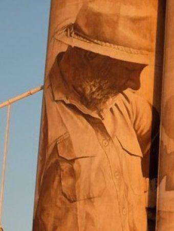 Character one on Guido van Helten's Brim silo artwork.