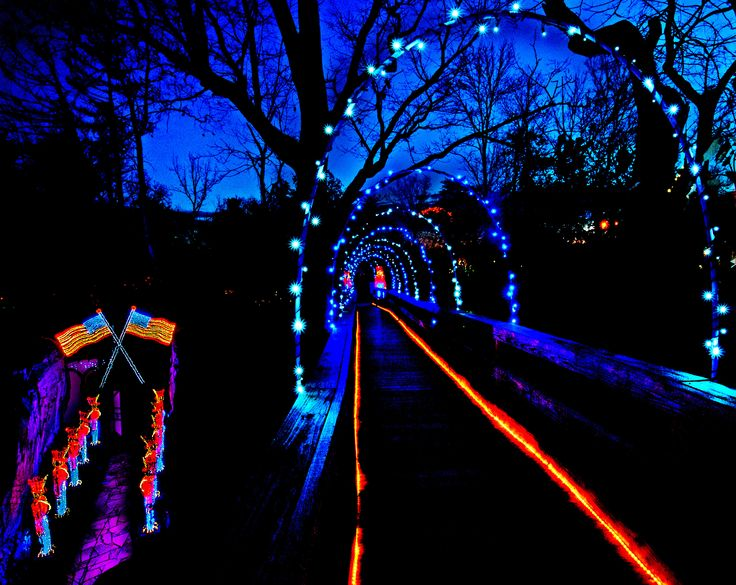 Christmas At Rock City! Http://seerockcity.com/pages/Enchanted Garden Of  Lights/ | The Enchanted Garden Of Lights | Pinterest | Enchanted Garden,  City And ...