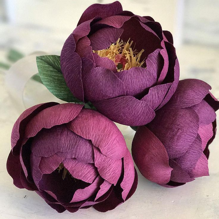 """429 Likes, 10 Comments - Lia Griffith (@liagriffith) on Instagram: """"I love seeing fellow paper flower artists creating beautiful things!! @pinkcherrymama made these…"""""""