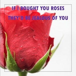 17 Best Images About Valentine 39 S Day Messages And Quotes