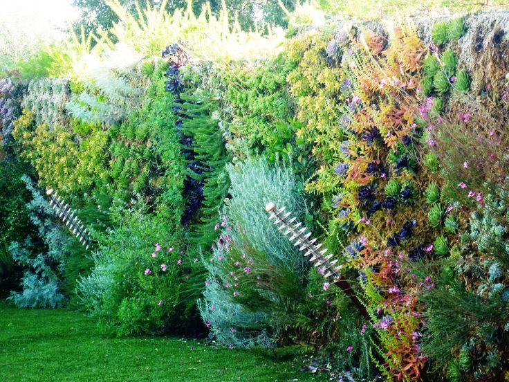 1000 id es sur le th me cr ation de jardin contemporain for Amenagement jardin var