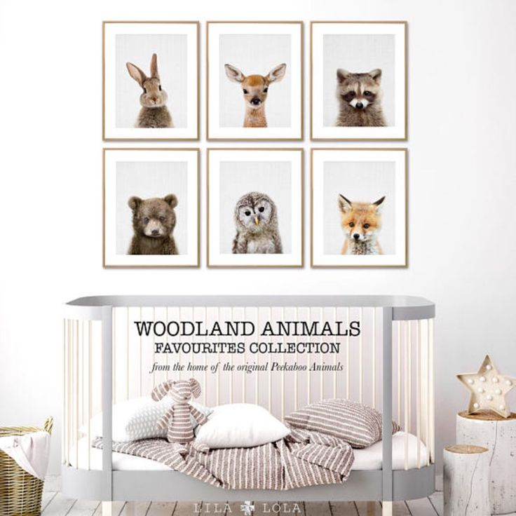 Our favourite six Woodlands Peekaboo Animals are now available to purchase as a set! A warm and cute touch to your nursery walls! L