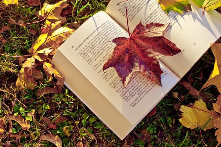 Un libro d'autunno.