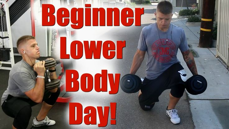Full Beginner Lower Body Workout! (Set by Set) #healthychoices #crossfitlife #fitlife #lats #fitgram #gym #fitnessmotivation #fitnessphysique