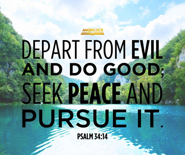 Depart from evil, and do good; seek peace, and pursue it.  Psalms 34:14