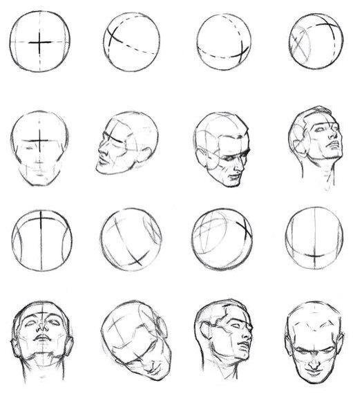 схема построения головы в