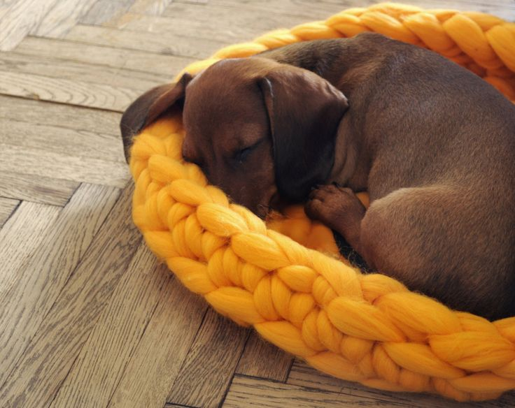 Chunky Knit Pet Beds by Anna Mo