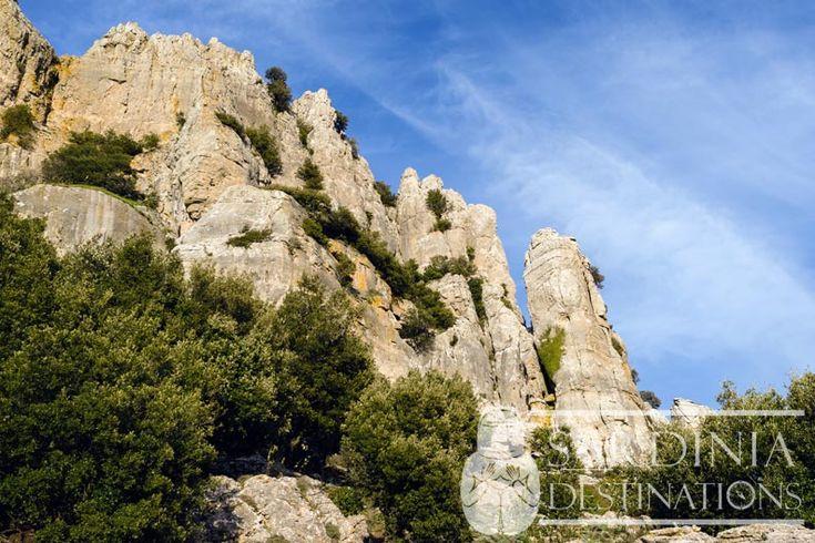 Montagna di San Giovanni - Orgosolo
