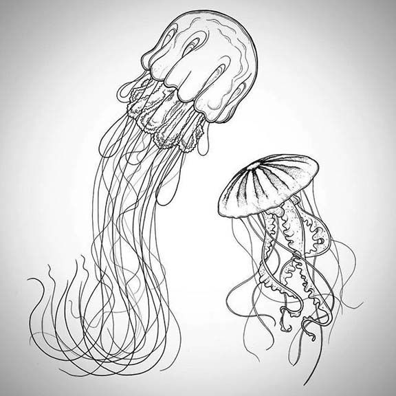 how to draw a simple jellyfish