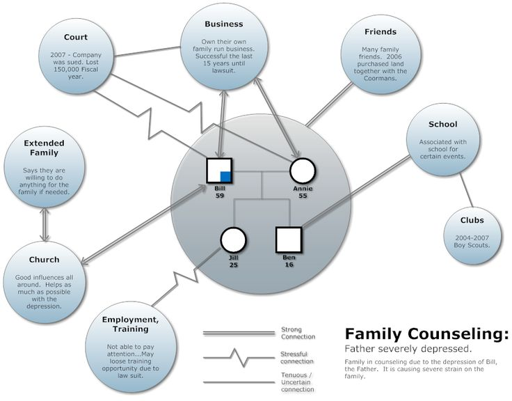 17 best social visualizations genograms and ecomaps for Ecomaps social work template