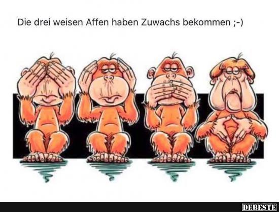 Die drei weisen Affen haben Zuwachs bekommen.. | DEBESTE.de, Lustige Bilder, Sprüche, Witze und Videos