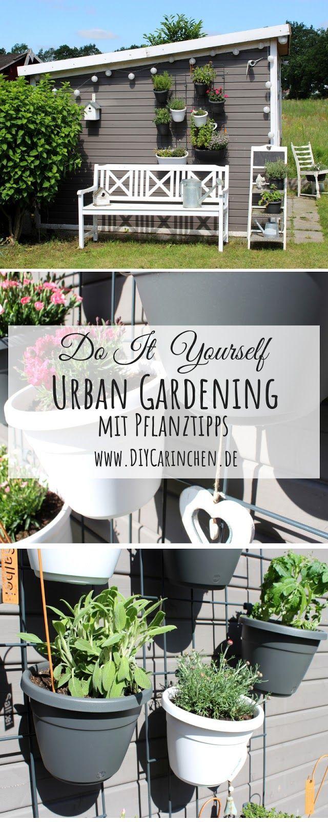Diy Urban Gardening Mit Dem Emsa Wandgarten Tipps Und Tricks Wandgarten Gardening Urban Garden Design