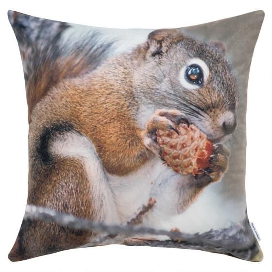 Hungry Squirrel Toss 20x20