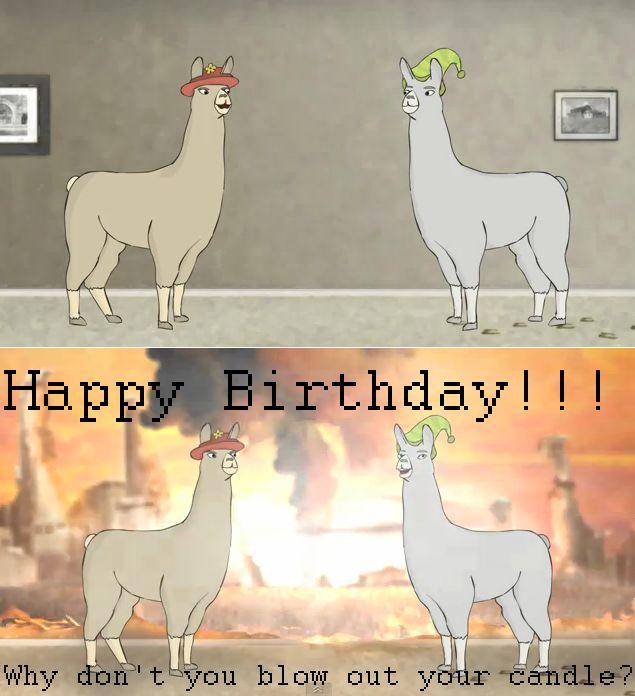 llamas with hats!