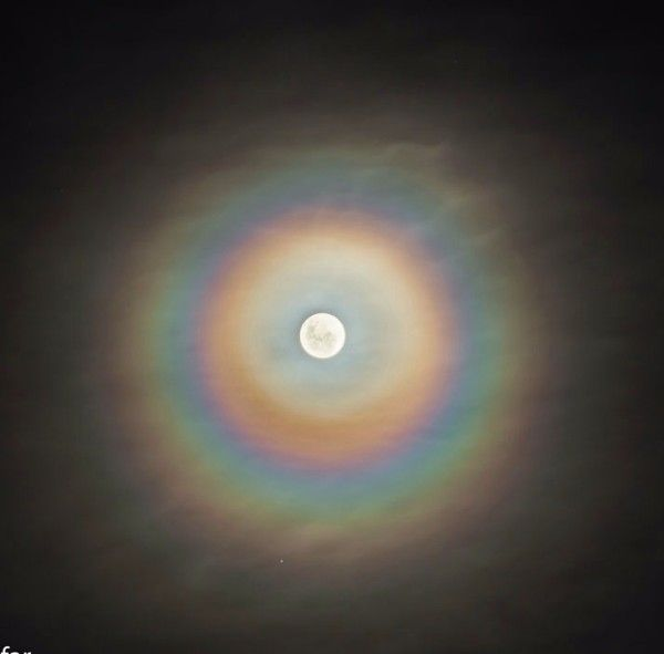 Corona around the moon -  These colorful rings of a lunar corona appear when we see the moon through a very thin cloud of similarly-sized water droplets - Photo by Sergio Emilio Montúfar Codoñer of Argentina.
