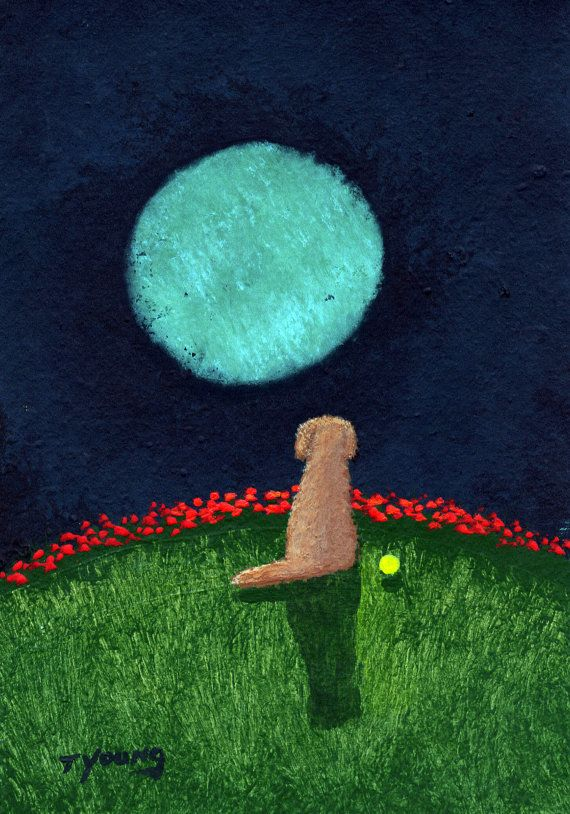 Red Goldendoodle Dog Modern Folk Art PRINT of Todd Young painting Green Moon on Etsy, $14.20 CAD