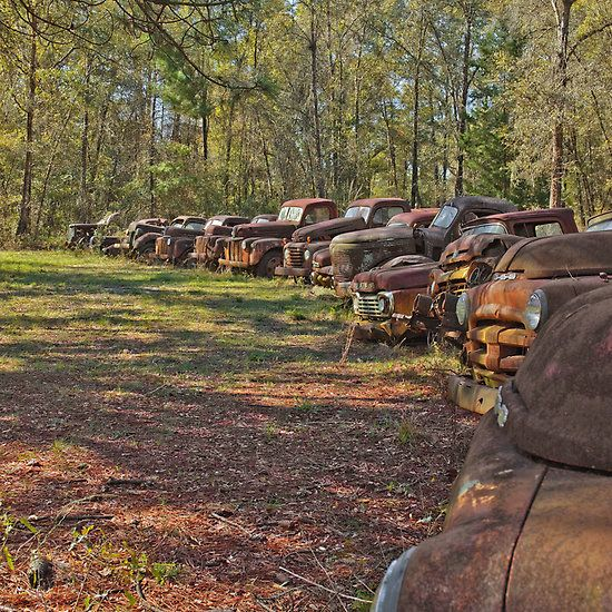 RUSTY OLD CARS AND TRUCKS 2