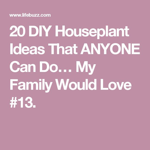 20 DIY Houseplant Ideas That ANYONE Can Do… My Family Would Love #13.
