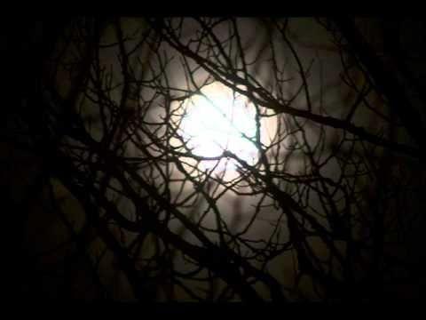 Henry Kuttner - Byl to démon (Horor-rozhlasová hra) - YouTube