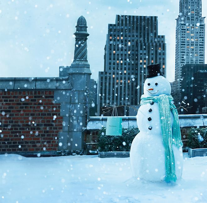 I only put this into fantasy, but how often does it snow in WA state?  : Big Cities, Gifts Bags, Tiffany Blue, Winter Wonderland, Shops Bags, Christmas Snowman, New York, Special Gifts, Cities View