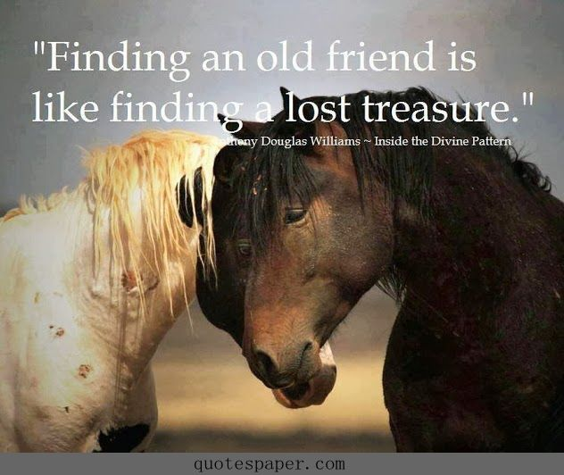 Old Friends Reunited Quotes: Best 25+ Old Friendship Quotes Ideas On Pinterest