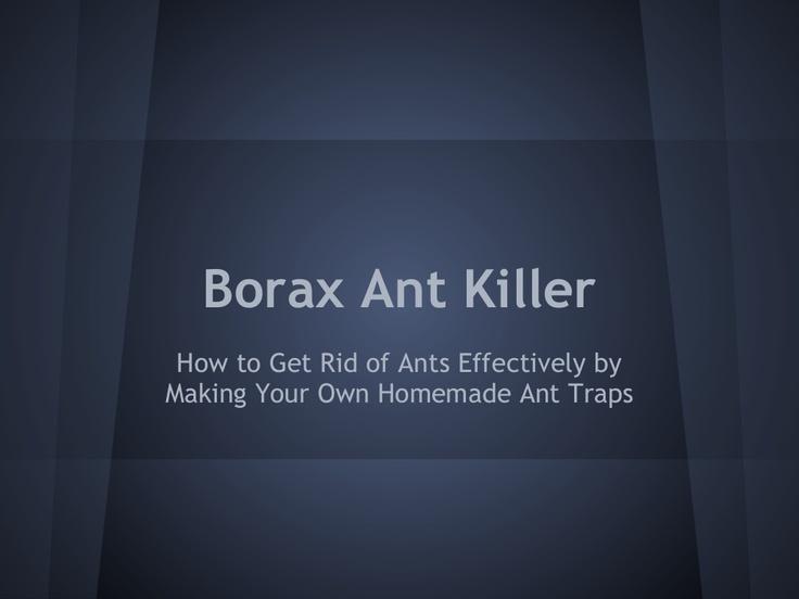 borax-ant-killer-21762810 by matt76allen via Slideshare