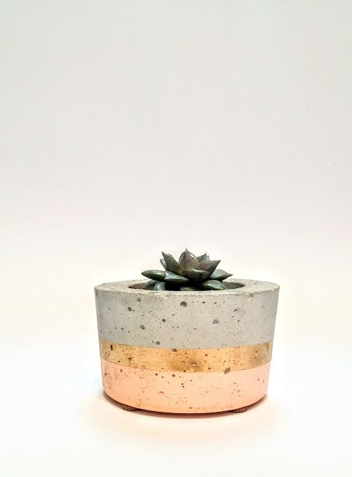 Effie Pots & Co. Modest Short concrete planter in blush + gold available at Harold + Ferne: The Local Goods Co.