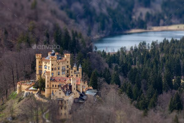 Hohenschwangau Castle Germany Germany Castles Aerial View Neuschwanstein Castle