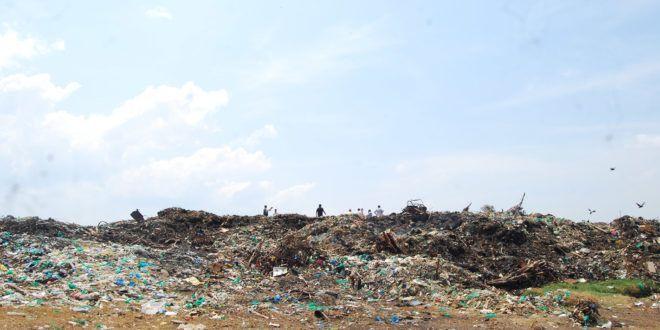 Novela – IPAAM recebe visita de prefeito de Parintins para tratar sobre o lixão
