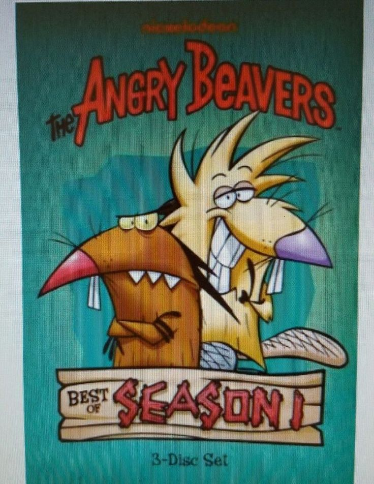 NICKELODEON THE ANGRY BEAVERS BEST OF SEASON 1 - 3 DISC DVD SET - NEW SEALED