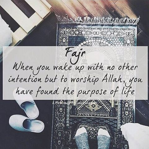 Fajr when you wake up with no other intention but to worship Allah you have found the purpose of life