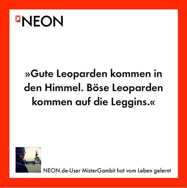 #leotights
